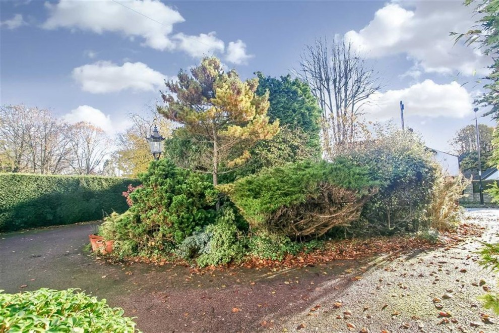 Images for Box Ridge Avenue, West Purley, Surrey EAID:SHINEROCKSPAPI BID:1