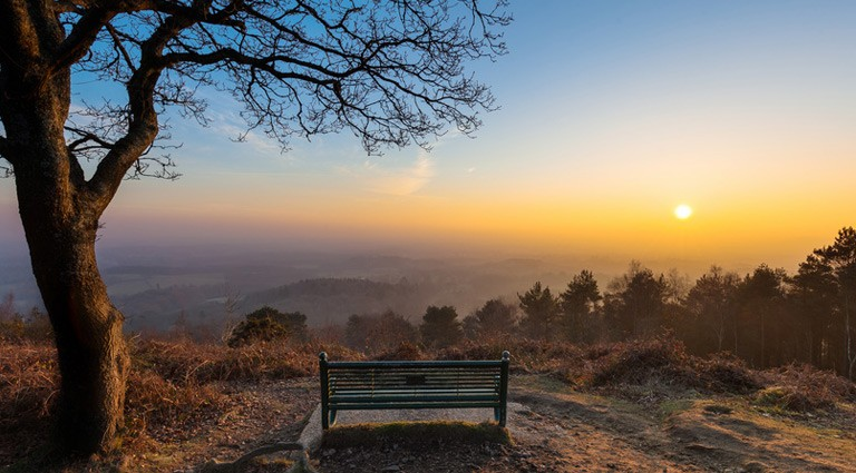 Top ten places you must see in Surrey